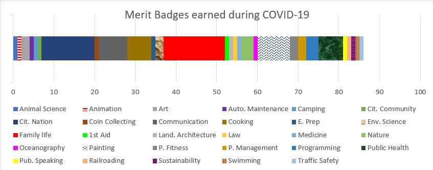 Merit Badge Graph